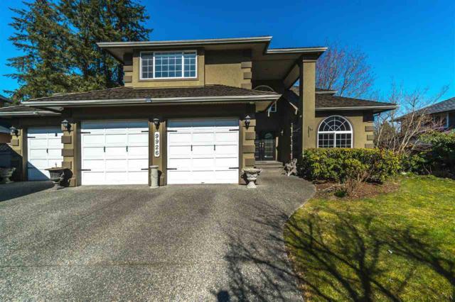 9926 180A Street, Surrey, BC V4N 4V5 (#R2350496) :: Premiere Property Marketing Team