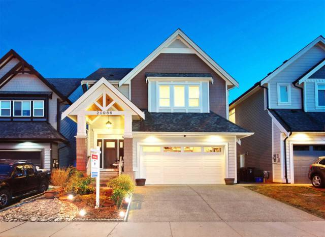 20966 80B Avenue, Langley, BC V2Y 0R2 (#R2350514) :: Vancouver Real Estate