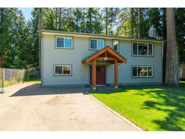 20412 40B Avenue, Langley, BC V3A 5L9 (#R2350810) :: Premiere Property Marketing Team