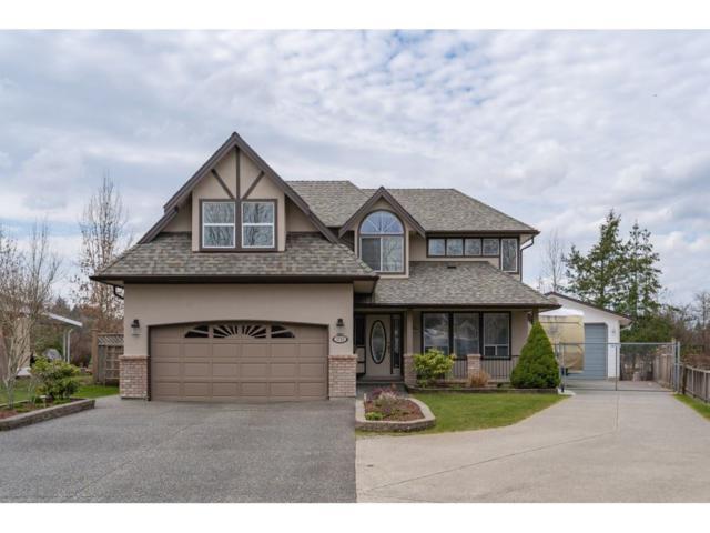 4755 215A Street, Langley, BC V3A 8G8 (#R2351160) :: Premiere Property Marketing Team