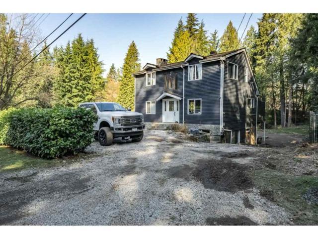 18957 86 Avenue, Surrey, BC V4N 6E3 (#R2353053) :: Vancouver Real Estate