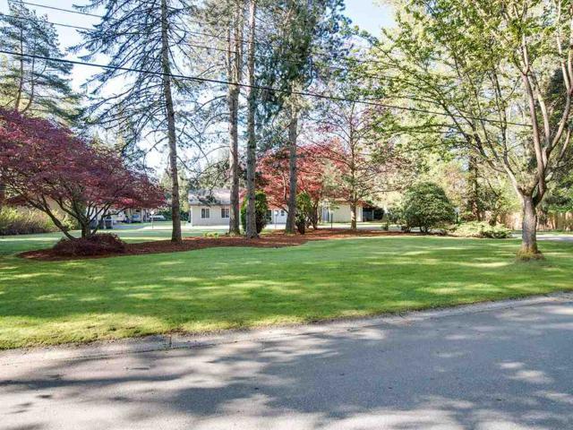 18914 87A Avenue, Surrey, BC V4N 6E4 (#R2360994) :: Royal LePage West Real Estate Services