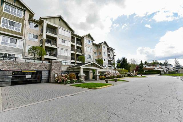 19673 Meadow Gardens Way #117, Pitt Meadows, BC V3Y 0A1 (#R2362387) :: Royal LePage West Real Estate Services
