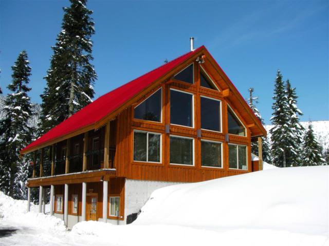 20793 Mt. Keenan Road, Agassiz, BC V0M 1A1 (#R2364691) :: Vancouver Real Estate