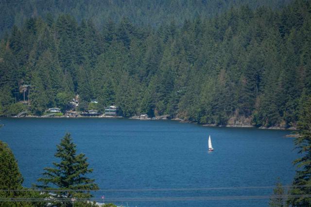 790 Baycrest Drive, North Vancouver, BC V7G 1N8 (#R2365128) :: Vancouver Real Estate
