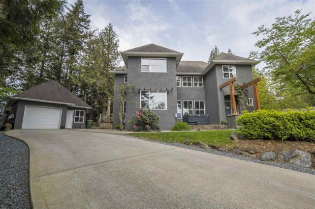 10000 Eagle Crescent, Chilliwack, BC V2P 7R1 (#R2365163) :: Vancouver Real Estate