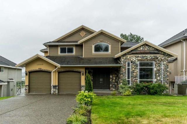 12039 101A Avenue, Surrey, BC V3V 2Z7 (#R2369574) :: Vancouver Real Estate