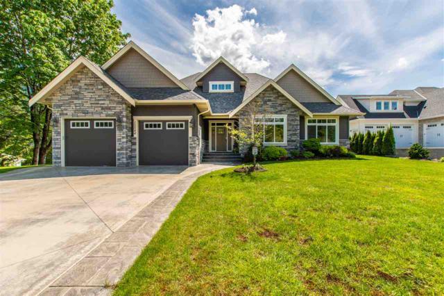 10544 Woodrose Place, Rosedale, BC V0X 1X1 (#R2370098) :: Royal LePage West Real Estate Services