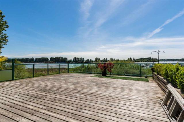 1850 Argue Street #1, Port Coquitlam, BC V3C 5K4 (#R2370696) :: Vancouver Real Estate