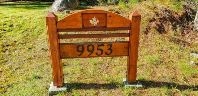 9953 Wescan Road, Halfmoon Bay, BC V0N 1Y2 (#R2371186) :: Premiere Property Marketing Team