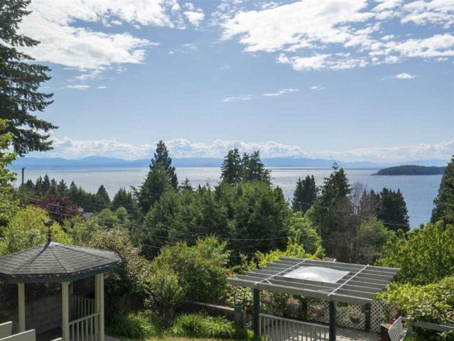 5160 Radcliffe Road, Sechelt, BC V0N 3A2 (#R2371237) :: RE/MAX City Realty