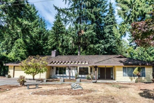2545 Kitchener Avenue, Port Coquitlam, BC V3B 5M6 (#R2375052) :: Vancouver Real Estate