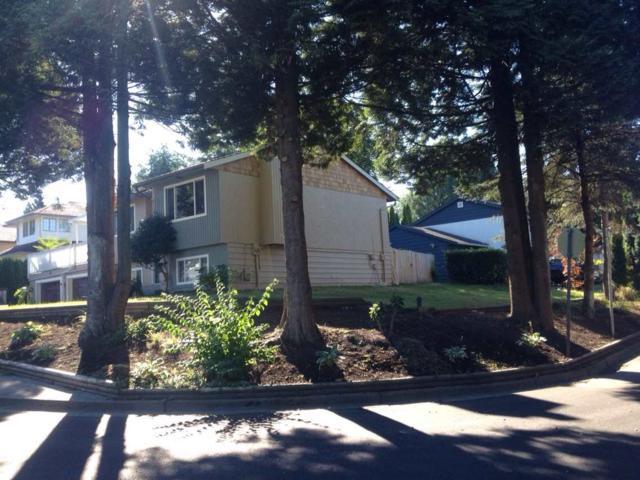 21092 Stonehouse Avenue, Maple Ridge, BC V2X 8L9 (#R2375654) :: Royal LePage West Real Estate Services