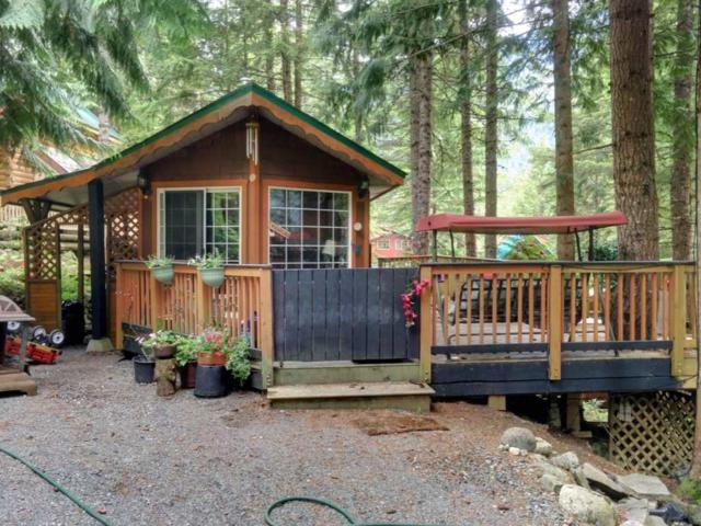 H102 Strawberry Lane, Hope, BC V0X 1L5 (#R2377270) :: Vancouver Real Estate