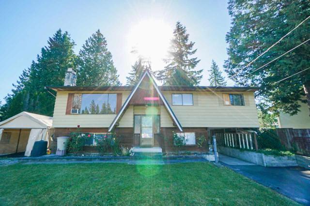 4072 202A Street, Langley, BC V3A 4Z5 (#R2379406) :: Premiere Property Marketing Team