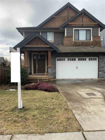 11005 Buckerfield Drive, Maple Ridge, BC V2W 1Z8 (#R2379833) :: RE/MAX City Realty