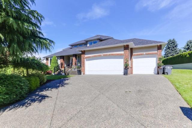 11332 153A Street, Surrey, BC V3R 8Z4 (#R2379947) :: Premiere Property Marketing Team