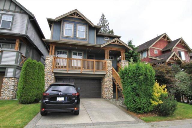 13876 229 Lane, Maple Ridge, BC V4R 0A1 (#R2380308) :: RE/MAX City Realty