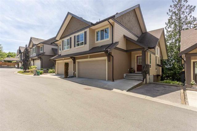 4967 220 Street #60, Langley, BC V2Y 1A7 (#R2380567) :: Premiere Property Marketing Team