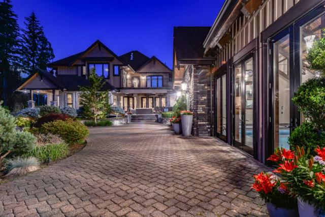 3053 Anmore Creek Way, Anmore, BC V3H 5G6 (#R2381049) :: Royal LePage West Real Estate Services