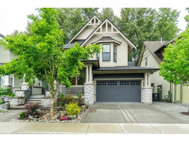 9449 Waska Street, Langley, BC V1M 4G4 (#R2383853) :: Premiere Property Marketing Team