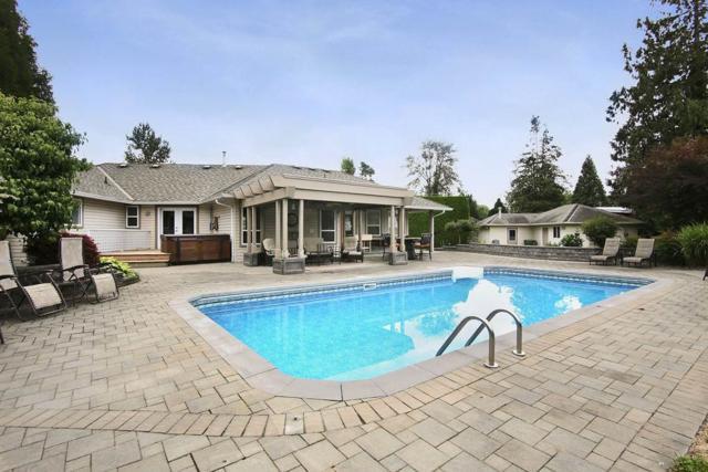 46489 Hope River Road, Chilliwack, BC V2P 3P5 (#R2385937) :: Vancouver Real Estate