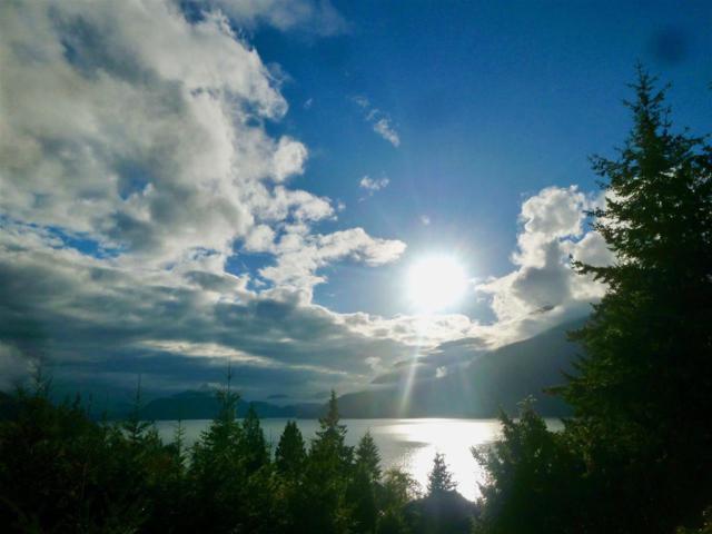 846 Rainbow Lane, Squamish, BC V0N 1J0 (#R2388231) :: RE/MAX City Realty