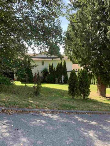 10073 120 Street, Surrey, BC V3V 4E3 (#R2389947) :: Vancouver Real Estate