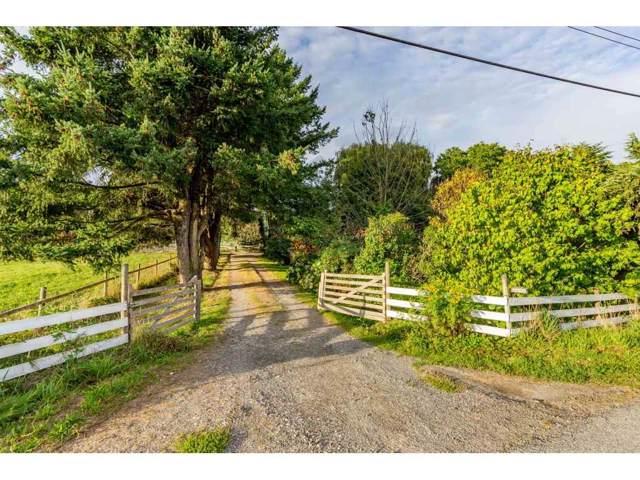 46109 Brinx Road, Chilliwack, BC V2P 8B7 (#R2403204) :: RE/MAX City Realty