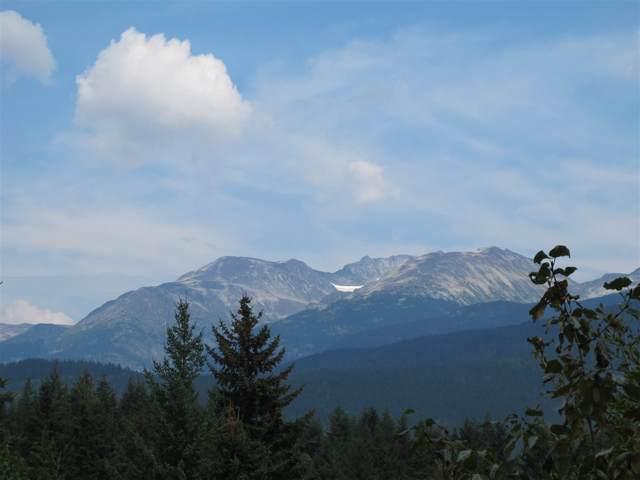 3452 Blueberry Drive, Whistler, BC V8E 0B9 (#R2405684) :: Homes Fraser Valley