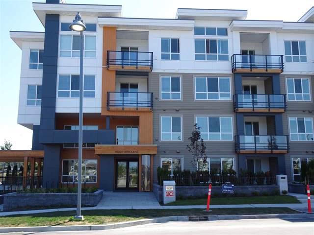 4690 Hawk Lane Cliff Drive #414, Tsawwassen, BC V4M 0A8 (#R2421071) :: Ben D'Ovidio Personal Real Estate Corporation | Sutton Centre Realty