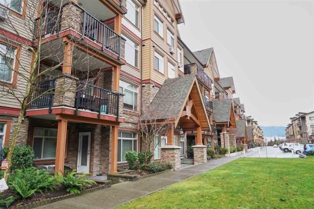 12565 190A Street #105, Pitt Meadows, BC V3Y 0E1 (#R2424222) :: RE/MAX City Realty