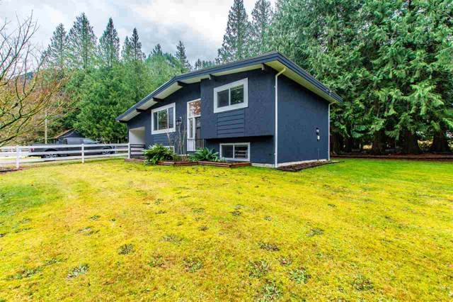 42882 Frost Road, Columbia Valley, BC V2R 4X8 (#R2424454) :: RE/MAX City Realty