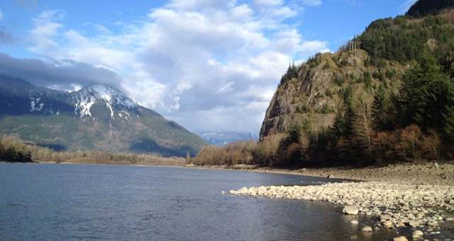 59895 Hunter Creek Road, Chilliwack, BC V0X 1L2 (#R2425362) :: RE/MAX City Realty
