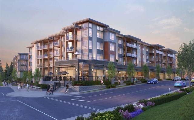 23233 Gilley Road #204, Richmond, BC V0V 0V0 (#R2428942) :: RE/MAX City Realty