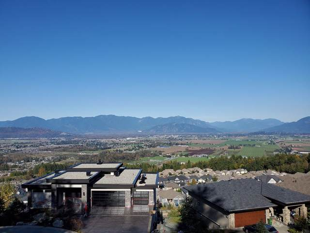 5444 Maclachlan Place, Chilliwack, BC V2R 0P3 (#R2431251) :: RE/MAX City Realty