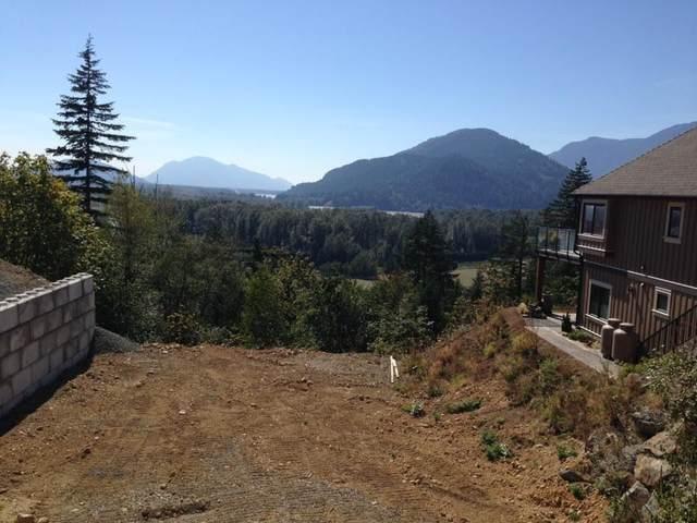 1465 Highlands Boulevard, Agassiz, BC V0M 1A1 (#R2450360) :: Premiere Property Marketing Team