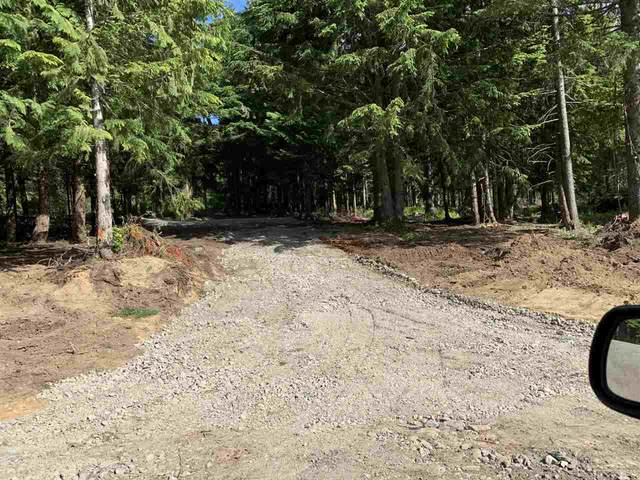 HG138 Old Hope Princeton Highway, Hope, BC V0X 1L5 (#R2459509) :: Premiere Property Marketing Team