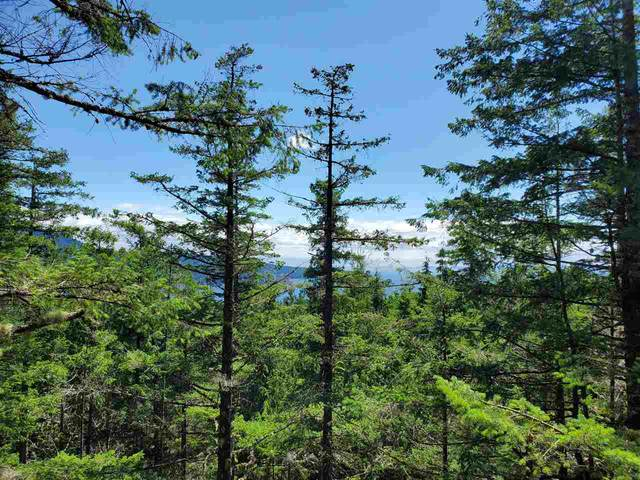 Lot 48 Flint Road, Keats Island, BC V0N 1V0 (#R2460854) :: 604 Home Group