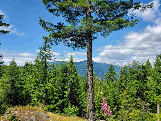 Lot 49 Flint Road, Keats Island, BC V0N 1V0 (#R2460996) :: 604 Home Group