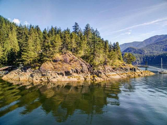 Lot 8 Best Point, North Vancouver, BC V0V 0V0 (#R2465218) :: 604 Home Group
