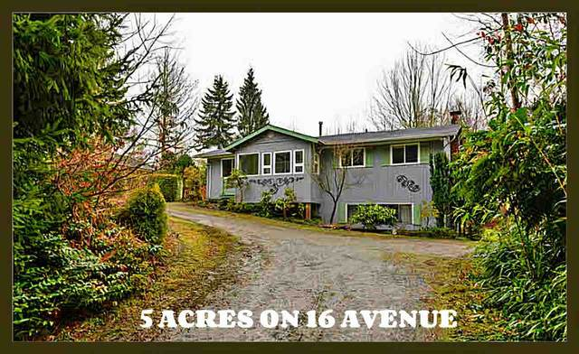 24382 16 Avenue, Langley, BC V2Z 1L2 (#R2494404) :: Ben D'Ovidio Personal Real Estate Corporation | Sutton Centre Realty
