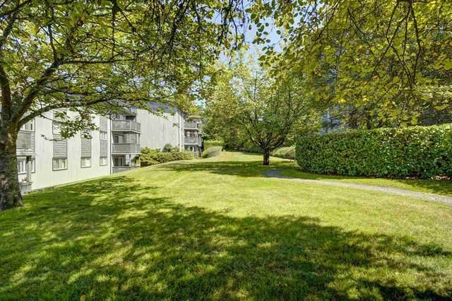 204 Westhill Place #329, Port Moody, BC V3H 1V2 (#R2496106) :: Homes Fraser Valley