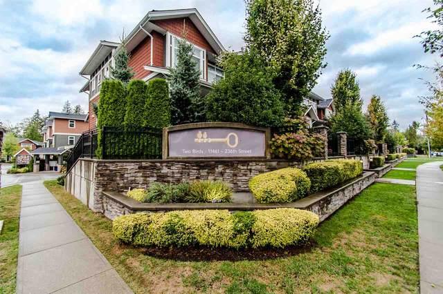 11461 236 Street #44, Maple Ridge, BC V2W 0H6 (#R2499745) :: Premiere Property Marketing Team