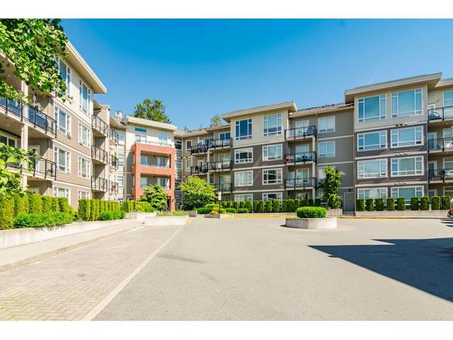 20211 66 Avenue C211, Langley, BC V2Y 0L4 (#R2502252) :: 604 Realty Group