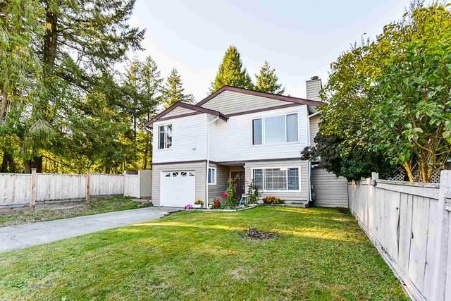 12233 80B Avenue, Surrey, BC V3W 7R5 (#R2502694) :: Ben D'Ovidio Personal Real Estate Corporation   Sutton Centre Realty