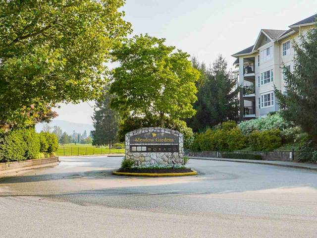19673 Meadow Gardens Way #318, Pitt Meadows, BC V3Y 0A1 (#R2506719) :: Homes Fraser Valley