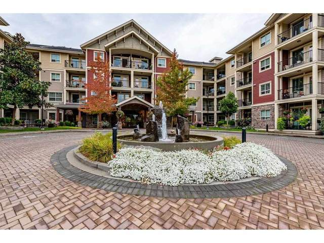 22323 48 Avenue #205, Langley, BC V3A 3N4 (#R2507050) :: 604 Home Group