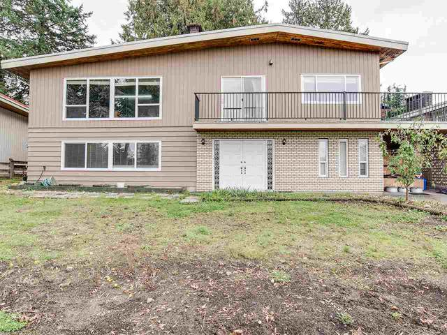 11553 Bailey Crescent, Surrey, BC V3V 2V2 (#R2507844) :: Initia Real Estate