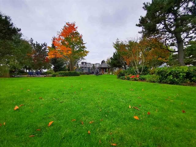 12639 No. 2 Road #204, Richmond, BC V7E 6N6 (#R2508237) :: Initia Real Estate